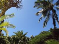 Hawaii_sky